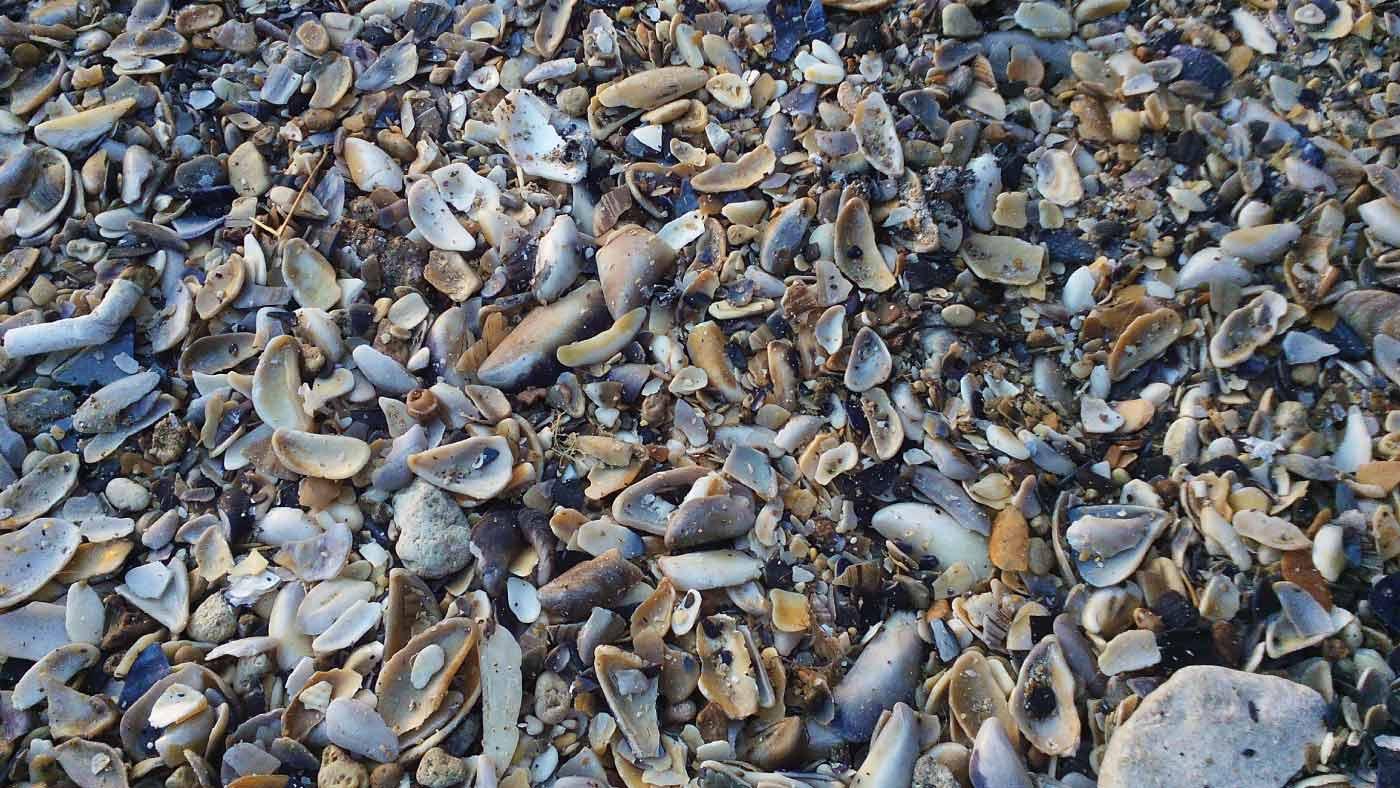blog FUNKYFAIN | plaja, mare, 1 mai